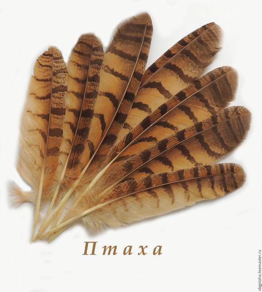 Другие виды рукоделия ручной работы. Ярмарка Мастеров - ручная работа. Купить Перья филина крупные 26-36 см. Handmade.