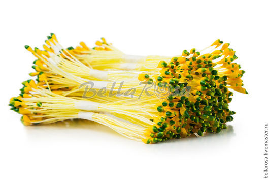 Тычинки `Лотос круглые L`. Желтые ножки, желто-зеленые головки. В пучке 25 двусторонних тычинок (производство - Таиланд). 15 руб пучок.