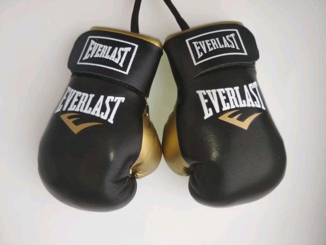 Boxing gloves, souvenir, Car souvenirs, Volgograd,  Фото №1