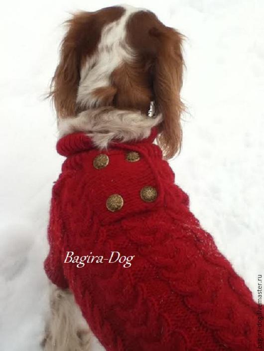 Одежда для собак, ручной работы. Ярмарка Мастеров - ручная работа. Купить Свитер  для собак с пуговицами. Handmade. Разноцветный, свитер для кхс