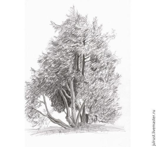 Пейзаж ручной работы. Ярмарка Мастеров - ручная работа. Купить Картина Туя на ветру, рисунок карандаш графика серый белый. Handmade.