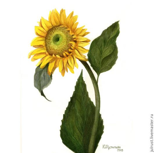 Картины цветов ручной работы. Ярмарка Мастеров - ручная работа. Купить Картина акварелью Подсолнушек  желтый зеленый классическая живопись. Handmade.