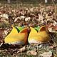 """Обувь ручной работы. Ярмарка Мастеров - ручная работа. Купить Тапочки мужские  """"Владушка"""" серый валенки зеленый оранжевый. Handmade."""