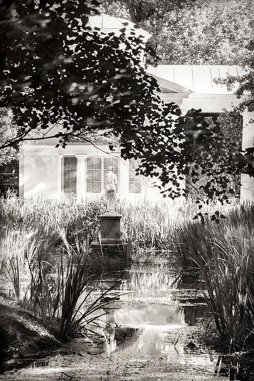 Черно-белая художественная фотография Парковый пейзаж «Ведута. Арабески света», Павловск, Россия – Елена Ануфриева, картина для интерьера на заказ