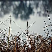 Fine art photographs handmade. Livemaster - original item A premonition of winter. Handmade.