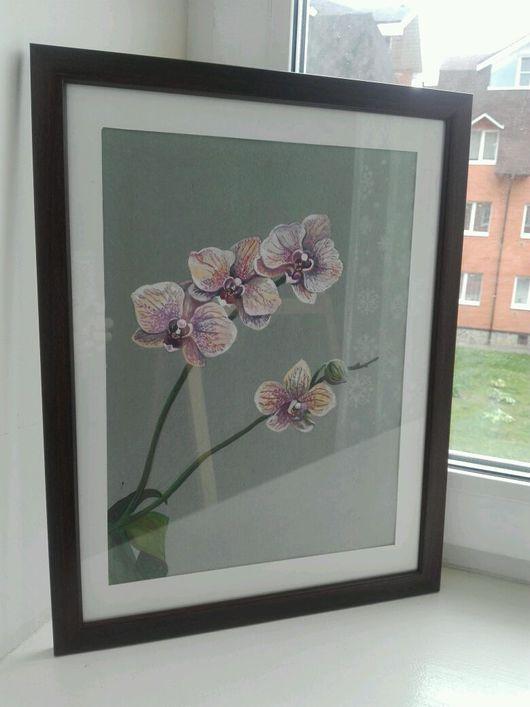 Картины цветов ручной работы. Ярмарка Мастеров - ручная работа. Купить Орхидея фаленопсис. Handmade. Орхидея, цветы, гуашь