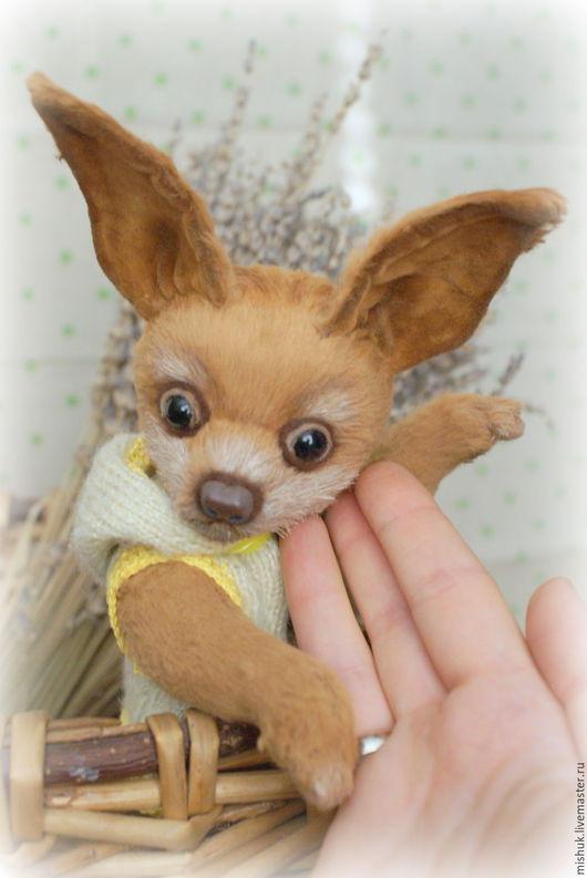 Мишки Тедди ручной работы. Ярмарка Мастеров - ручная работа. Купить Тедди собачка той-терьер МОСЯ. Handmade. Тедди