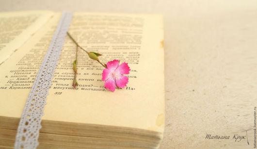 Цветы полевой гвоздики из фоамирана, бесплатный видео мастер-класс. Цветы из фоамирана.