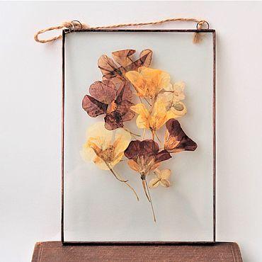 Для дома и интерьера ручной работы. Ярмарка Мастеров - ручная работа Гербарий в стекле. Гербарий из цветов и трав в рамке. Настурция. Handmade.