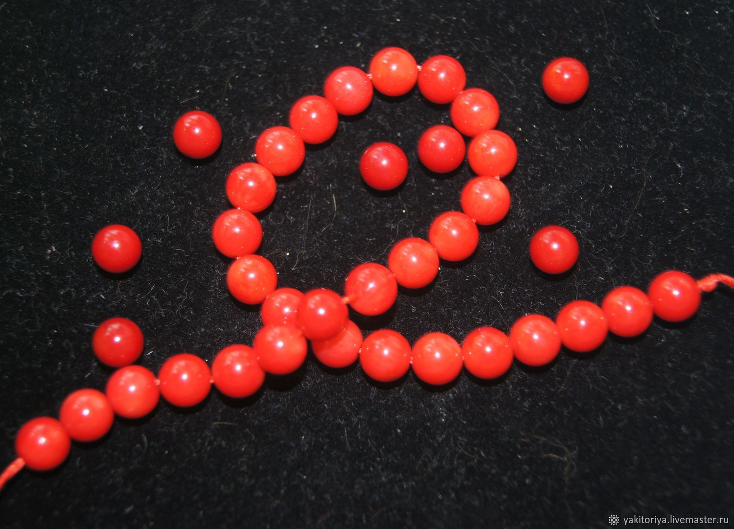 Coral natural bright coral beads 8mm, AAA quality, Beads1, Moscow,  Фото №1