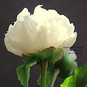 Цветы и флористика ручной работы. Ярмарка Мастеров - ручная работа Белый пион (холодный фарфор). Handmade.