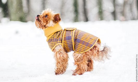 """Одежда для собак, ручной работы. Ярмарка Мастеров - ручная работа. Купить Попона """"Сойер"""" для собак. Handmade. Желтый, одежда для собак"""