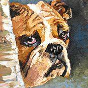Картины и панно handmade. Livemaster - original item Osia, family pet oil painting. Handmade.