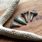Русский стиль handmade. Livemaster - original item Fossilized shark tooth (2nd grade) 17-27 mm. Handmade.