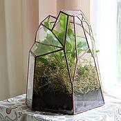 Цветы и флористика handmade. Livemaster - original item The Floriana with fern and moss. Handmade.