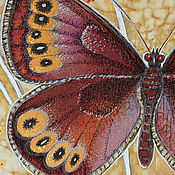 """Картины и панно ручной работы. Ярмарка Мастеров - ручная работа """"Бабочка"""". Handmade."""