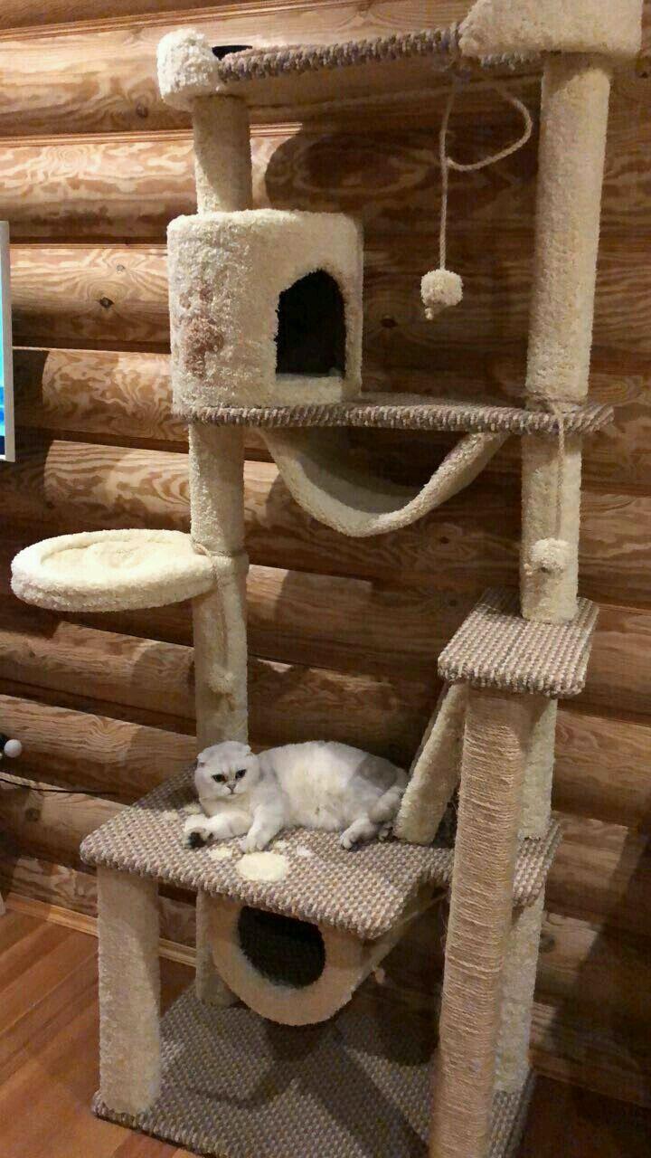 Аксессуары для кошек, ручной работы. Ярмарка Мастеров - ручная работа. Купить Когтеточка, комплекс для кошек. Handmade. Зеленый, комплекс из ковролина