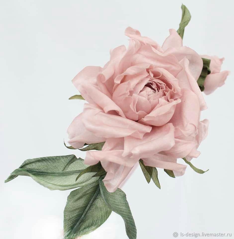 Роза Венеция, Цветы, Киев,  Фото №1