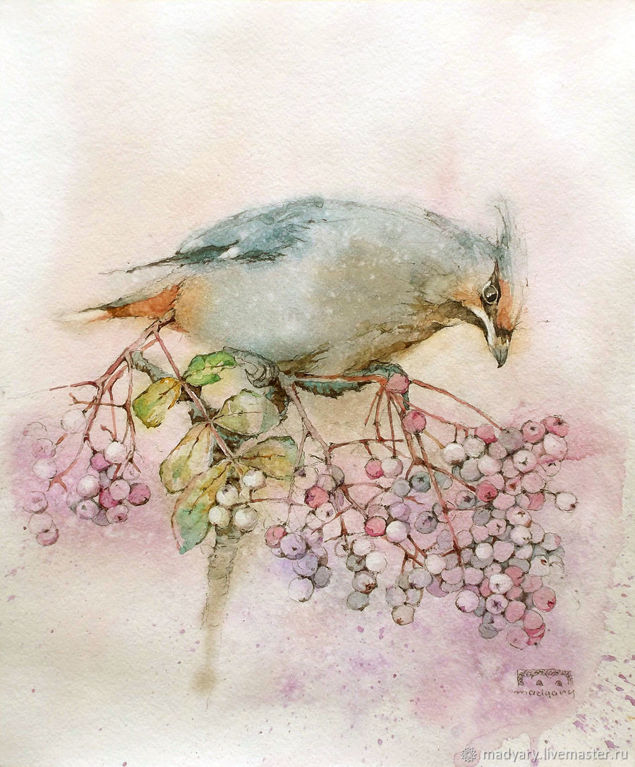 picture of watercolor Bird with pink berries, Pictures, Smolensk,  Фото №1