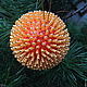 """Новый год 2017 ручной работы. Ярмарка Мастеров - ручная работа. Купить шар""""Апельсиновый рай"""". Handmade. Рыжий, шарики, новогодний сувенир"""