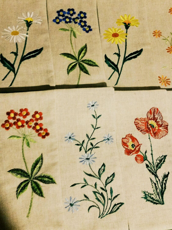 Rancimat wildflowers, Swipe, Ivanovo,  Фото №1