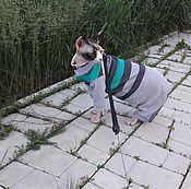 """Для домашних животных, handmade. Livemaster - original item Одежда для кошек """"Комбинезон Полосочки зеленые"""". Handmade."""
