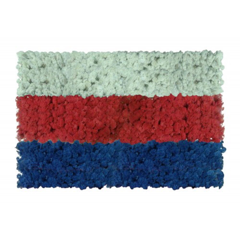 Флаг из стабилизированного мха, Атрибутика, Белгород,  Фото №1