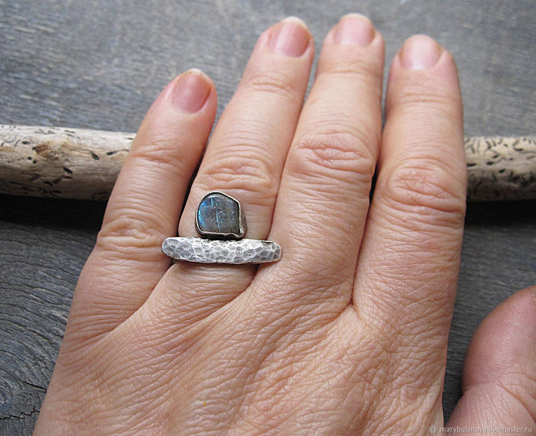 фото серебряного кольца и обычного верхняя часть змеи