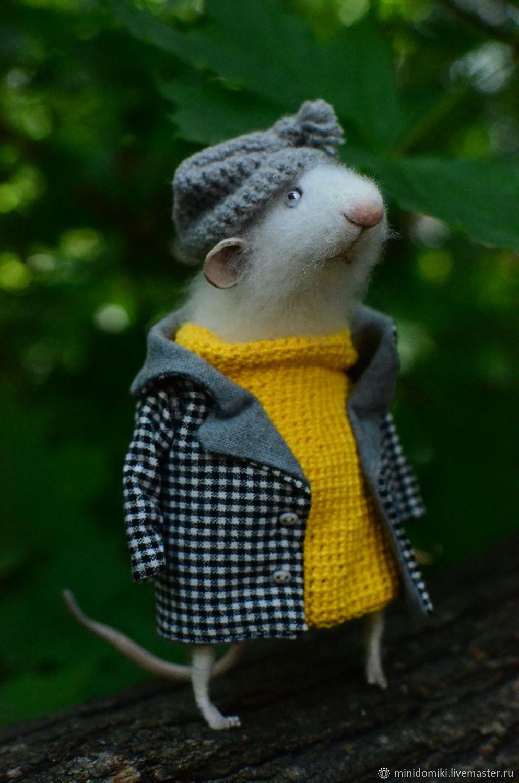 морковка клубника, картинки с мышонком в пальто дело