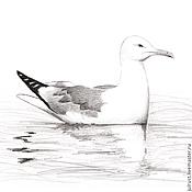 Картины и панно ручной работы. Ярмарка Мастеров - ручная работа Картина Чайка, серый белый черный птица рисунок графика карандаш. Handmade.