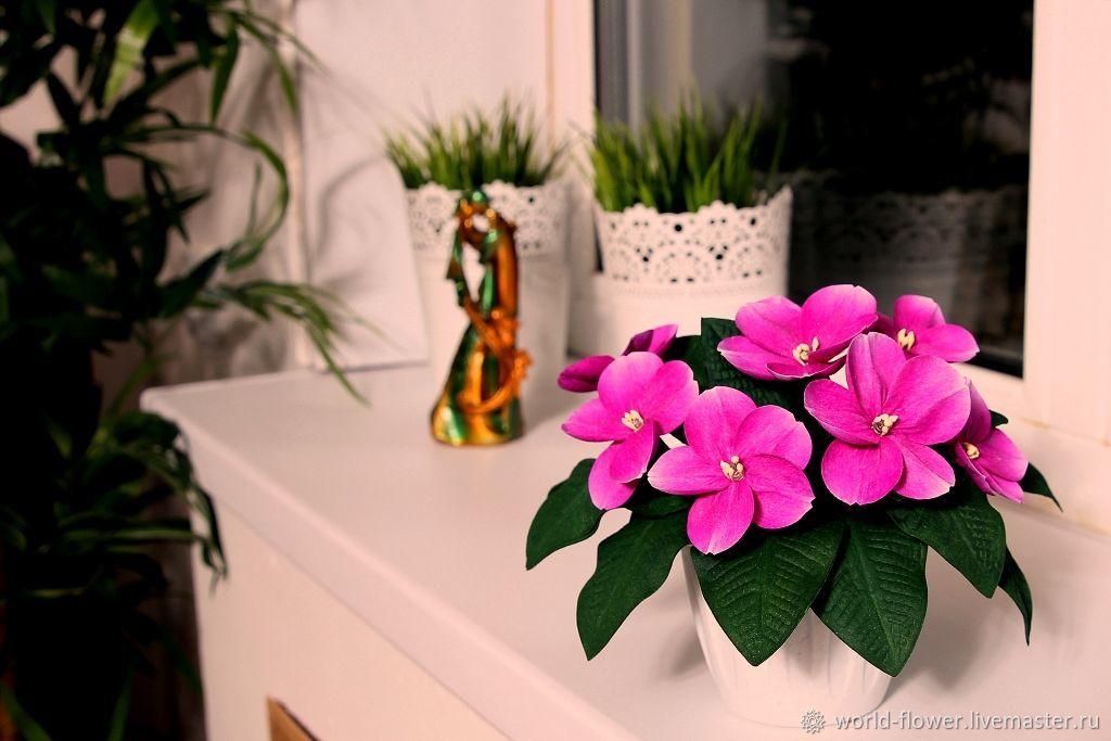 Букет фиалок стоимость, подарить цветы в виннице