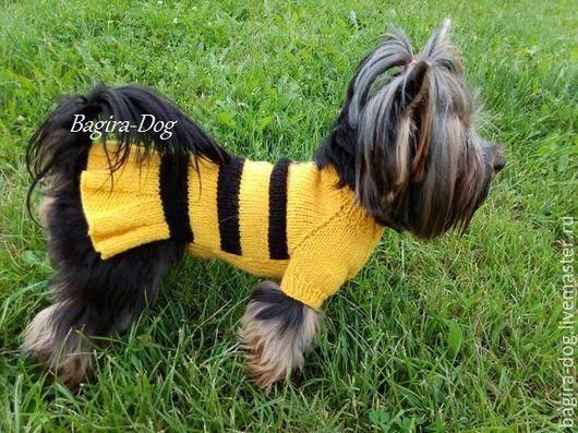 """Одежда для собак, ручной работы. Ярмарка Мастеров - ручная работа. Купить Платье для йорка """" Пчелка Майя """". Handmade."""