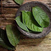 Материалы для творчества handmade. Livemaster - original item Fresh and dried guava leaves. Handmade.