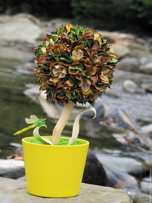 """""""Цветок у озера"""", Топиарии, Сочи, Фото №1"""