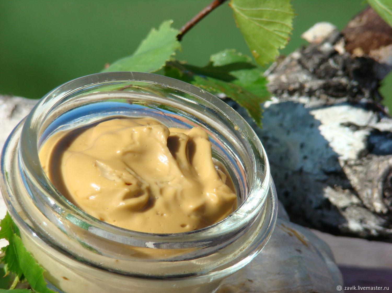 Гриб чага - фото и описание Лесная кладовая Гриб чага на березе