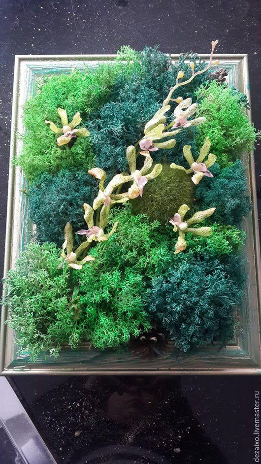 """Картины цветов ручной работы. Ярмарка Мастеров - ручная работа. Купить Фитокартина """"Сказка"""". Handmade. Тёмно-зелёный, стабилизированные цветы"""