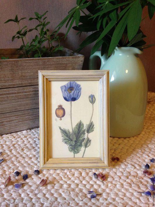 """Картины цветов ручной работы. Ярмарка Мастеров - ручная работа. Купить """"Ботаника. Синий мак"""" Панно в винтажном стиле. Handmade."""