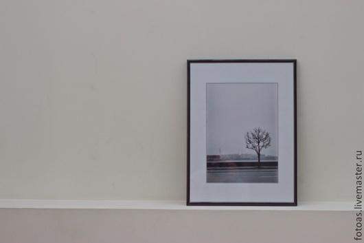 Дерево на Неве, фото снятое на пленочный фотоаппарат Зенит Е.
