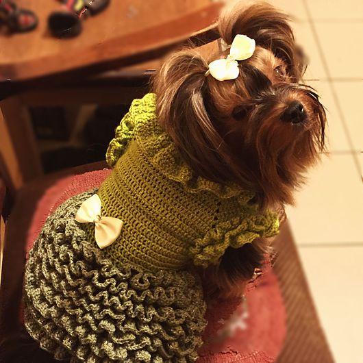 Одежда для собак, ручной работы. Ярмарка Мастеров - ручная работа. Купить Платье зеленое. Handmade. Одежда, собака, наряд для собачке