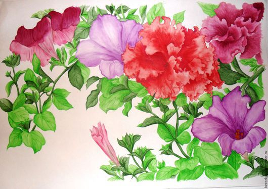 """Картины цветов ручной работы. Ярмарка Мастеров - ручная работа. Купить Акварельная картина """"Петунии"""". Handmade. Разноцветный, конан танигами"""