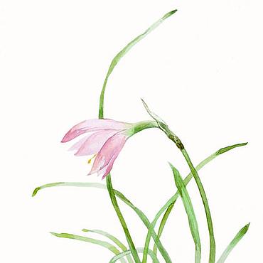 Картины и панно ручной работы. Ярмарка Мастеров - ручная работа Акварель. Весенний цветок. Handmade.