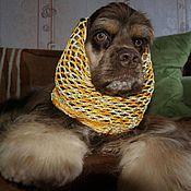 Для домашних животных, ручной работы. Ярмарка Мастеров - ручная работа Шапочка для спаниеля. Handmade.