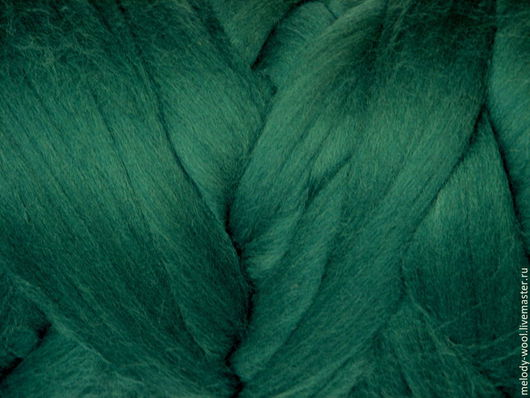 Валяние ручной работы. Ярмарка Мастеров - ручная работа. Купить Шерсть для валяния меринос 18 микрон цвет Ирландия (Ireland). Handmade.
