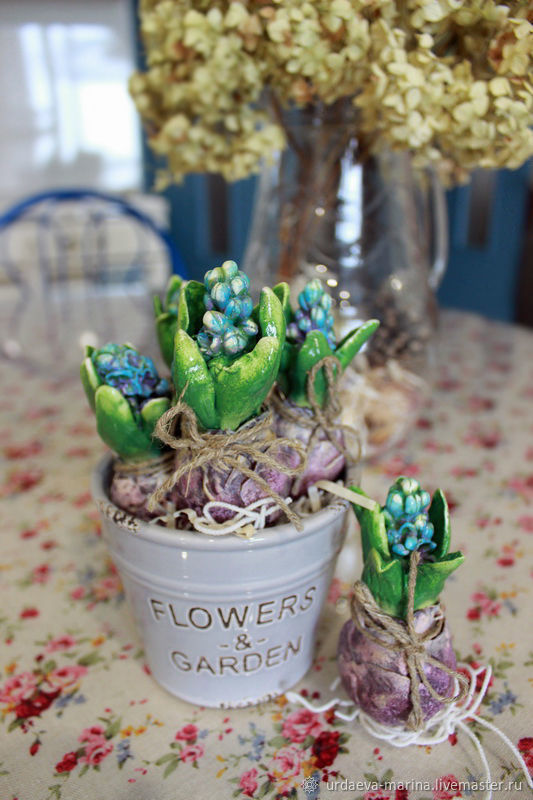 Гиацинты, Мини растения цветы, Красноярск,  Фото №1