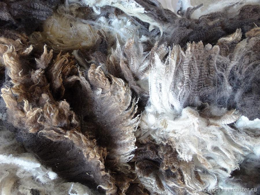 Меринос тонкорунный пестрый, Валяние, Крайстчерч, Фото №1