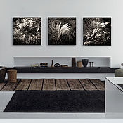 Картины и панно handmade. Livemaster - original item Black and white fine art photographs Nature, Fern Leaves Triptych Forest. Handmade.
