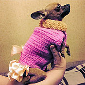 Для домашних животных, handmade. Livemaster - original item Knitted warm sweater for dogs. Handmade.