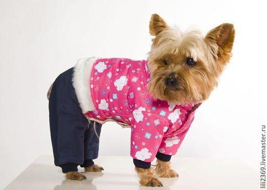 Одежда для собак, ручной работы. Ярмарка Мастеров - ручная работа. Купить Одежда для собак,комбинезон Мишки-Малышки. Handmade. йорк