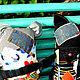 Игрушки животные, ручной работы. Мурмыс Урчайло.. Евгения Бочарова (jane72). Ярмарка Мастеров. Игрушка для детей, бязь