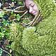 """Текстиль, ковры ручной работы. Заказать Покрывало """"Мох"""". Forest Notes -Уютный hand made. Ярмарка Мастеров. Фотосессия, покрывало"""